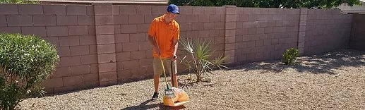 Tenant Move-Outs Leave Dog Messes, Peoria, AZ – Arrowhead Pooper Scoopers