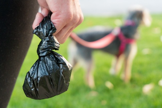 Image result for dog waste disposal bags