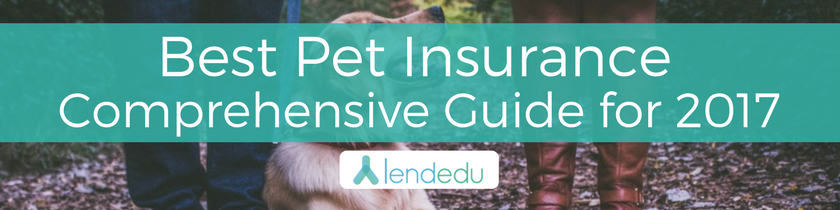 Best-Pet Insurance-Comprehensive-Guide-for-2017